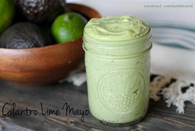 Cilantro Lime Mayo (AIP, Vinegar-free, 21DSD) Coconut Contentment (1 of 1)